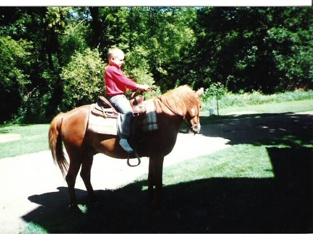 quarter horse essay giveaway